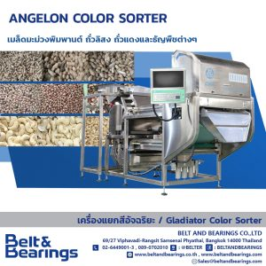 CASHEW NUTS PEANUTS KIDNEY BEAN MUNGBEAN SOYBEAN COLOR SORTER