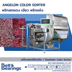 ANGELON COLOR SORTER CHILI